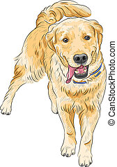 vector sketch happy dog breed Labrador Retriever smiling -...