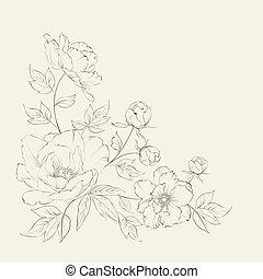 Bush of beautiful peonies. - Bush of beautiful peonies, ink...