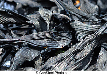 Charcoal from bamboo leaves, To make Chinese ink