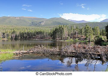 Rocky Mountains - Sprague Lake - Rocky Mountain National...