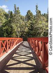 Bridge New Plymouth - Red railings and shadows of Poets...