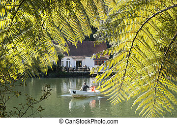 Pukekura Park Lake - Scene through fern fronds across the...