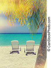 Caribbean beach chairs and palm - Empty tropical beach...