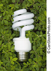 Green Energy - An energy saving lightbulb surrounded by...