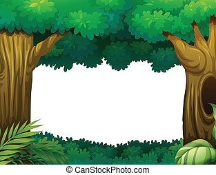 Forest - Illustration of a forest