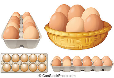 Eggs - Illustration of eggs in different containers