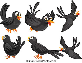 Black birds - Illustration of a set of black birds