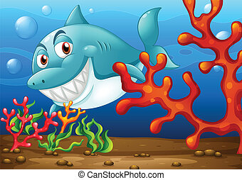 Shark - Illustration of a shark under the ocean