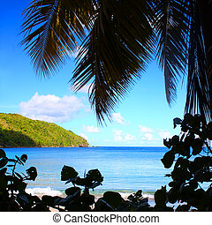 British Virgin Islands Beach Silhouette - Beach of Brewers...