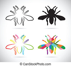 Vector image of an insects