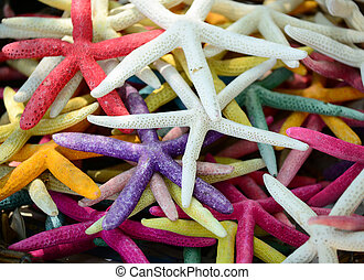 Pile of colorful sea starfish