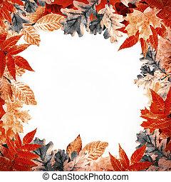 natural, hojas, reflejos, otoño, Plano de fondo, Multicolor