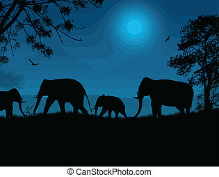 Elephants silhouette in africa at blue night, vector...