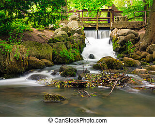 waterfall in woods green forest. stream in oliva park gdansk.
