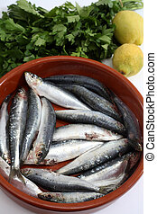 sardines vertical - Sardines (pilchards) in a rustic bowl...