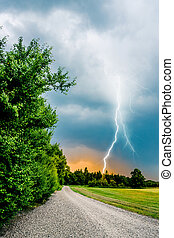 thunder and lightning hits trees - Top quality photo in high...