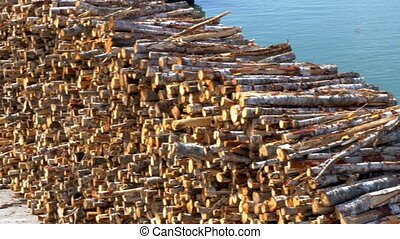 Heap of pulpwood for fire on display on the harbour of...