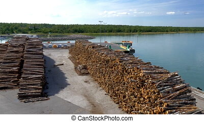 Lots of pulpwood on the harbour of Estonia ready for cargo -...