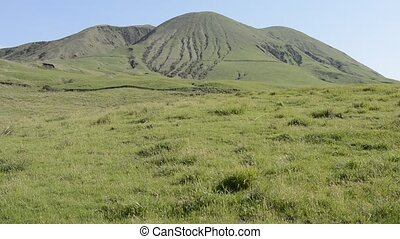 Mountain and grassy plain - Gentle slope to the mountain and...