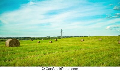 bale of hay in the field, time-lapse pan