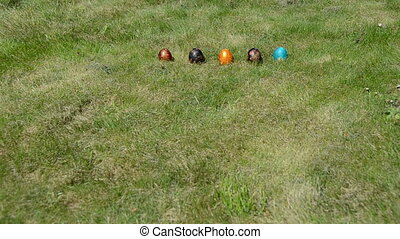 hand roll Easter egg - Traditional Easter game. Hand roll...
