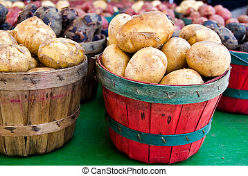 Spud Baskets - Variety of potatoes in bushel basket at the...