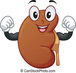 Healthy Kidney Mascot - Mascot Illustration Featuring a...