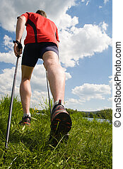 nordic walking - Nordic walking in summer nature.