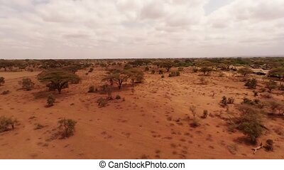 Aerial Shots Over The Savanna Of Africa