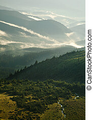 Morning fog in the mountains at sunrise, nature background