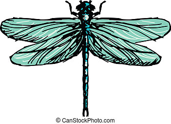 dragonfly - hand drawn, sketch illustration of dragonfly