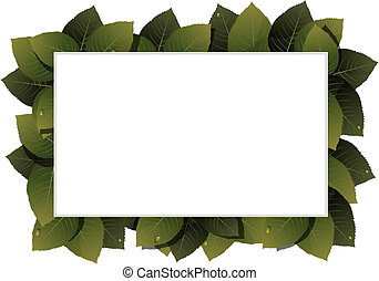 Green leaves frame - Lush foliage with water drops on a...