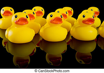 Yellow Rubber Ducks in Rows - Yellow rubber ducks in rows on...