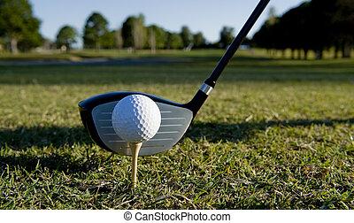 Golf Ball and Club - A golf ball and club on a golf course