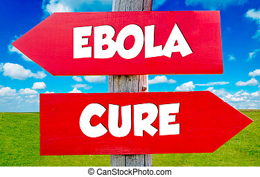 Ebola concept - Ebola concept on the red signs with...