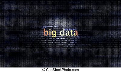 Big Data - The words Big Data in front of a digital...
