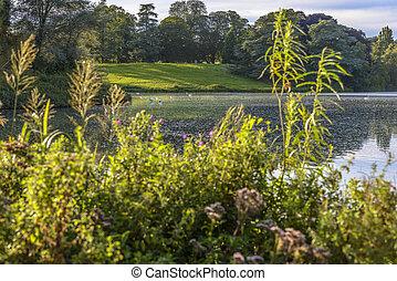 The lake in Blenheim Palace, England - The lake in Blenheim...