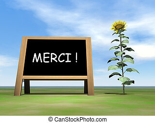 Sunflower blackboard saying thank you in french - 3D render