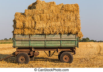Straw hay bales on a trailer - Fresh straw hay bales on a...