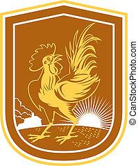 Chicken Rooster House Sunburst Shield Retro