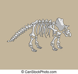 Triceratop Fossil