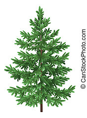 Christmas green spruce fir tree isolated - Green Christmas...