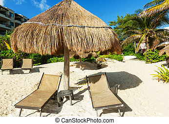 Beach scene -  beach scene