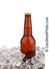 bottle of beer