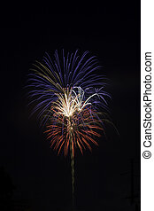 Red, white and blue fireworks against a black sky - Red,...
