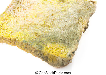 Moldy bread on white background