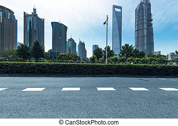 road in city - The century avenue of street scene in...