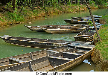 Rowboats - The anchored boats on a river of city park