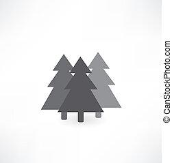 conifer icon