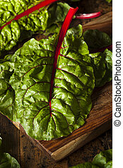 Raw Organic Red Swiss Chard on a Background